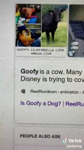 Video de Goofy