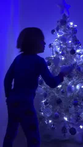 Pampita mostró cómo quedó su casa decorada para Navidad