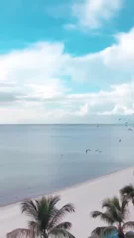 ¿Está sola? Las fotos de la cuarentena de la Niña Loly en Miami