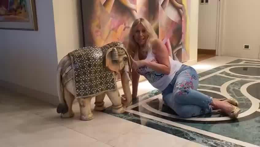 Ana Rosenfeld y los elefantes que tiene en su casa