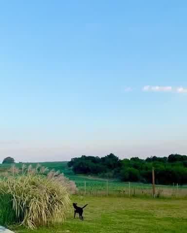 Ronnie Arias dejó todo y se mudó a Uruguay: conocé su nueva vida en el campo