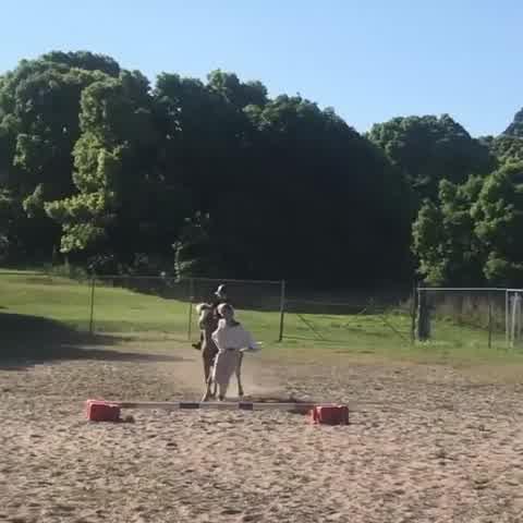 Chris Hemsworth mostró las habilidades de su esposa con los caballos