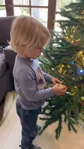 Mirá cómo quedó el árbol navideño de Mirko y Marley