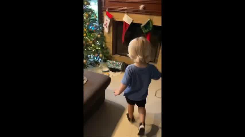 Para matarse de risa: Mirko, el hijo de Marley, se enojó con los Reyes Magos