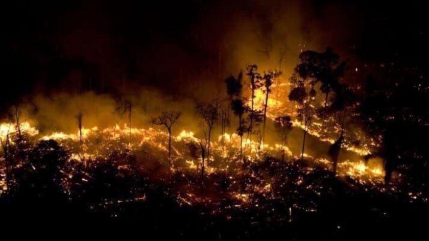 Sobre los incendios en el Amazonas, por Ursula Ures Poreda